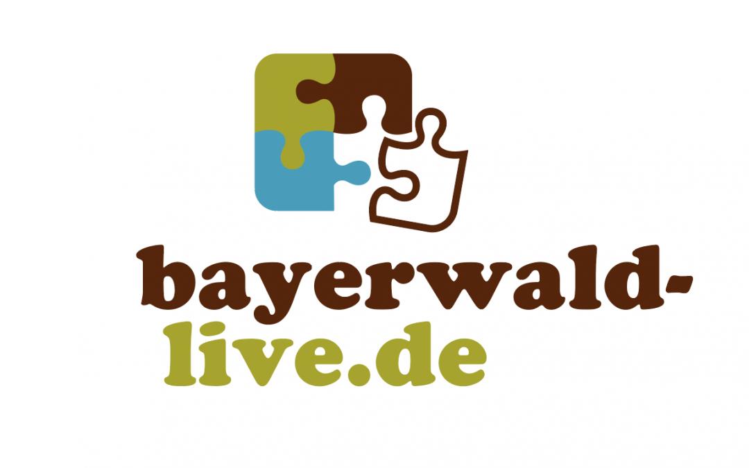 Logoentwicklung für Internet-Portal
